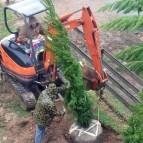It's Planting Season