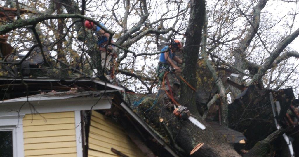 sinter storm damage clean up