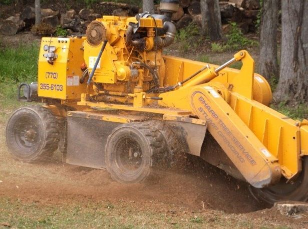 stump grinding services, stump grinder in action
