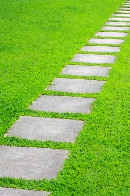 formal lawn design