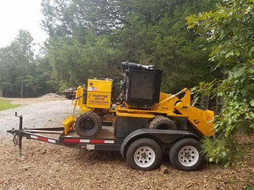 Sharp Tree Service - Stump Grinding and Removal